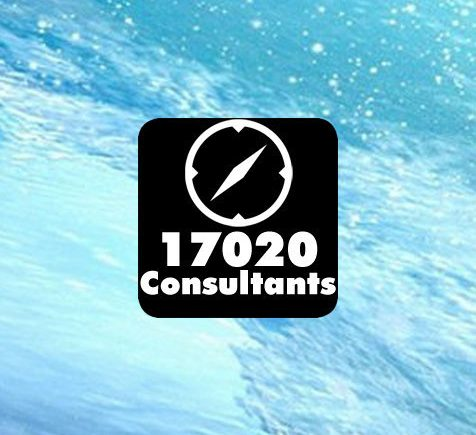 17020 consulting